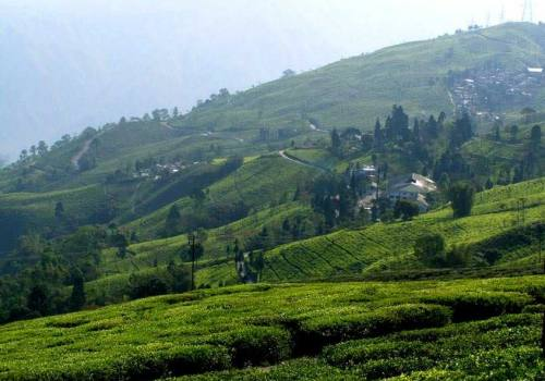 Darjeeling Mirik Package Tour