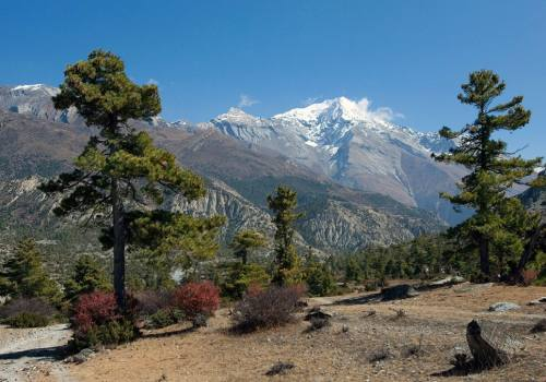 Round Annapurna Trek 23 Nights 24 Days